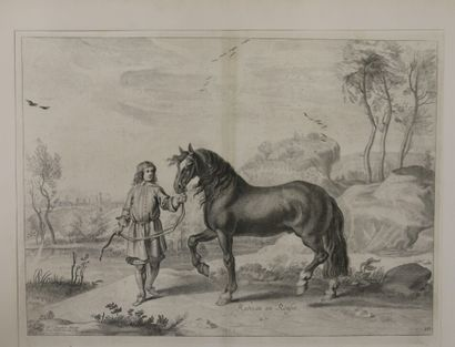 NEWCASTLE (Guillaume ou William CAVENDISH,...