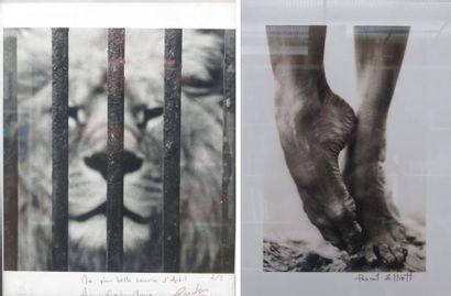 Photographie signée Rudon, dédicacée, encadrée,...