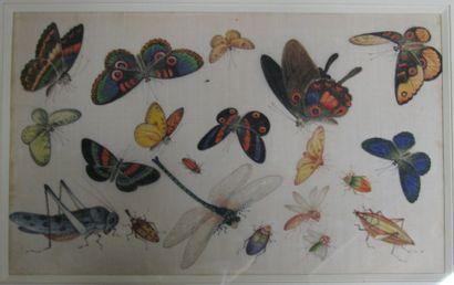 Papillons et insectes Deux papiers de riz....