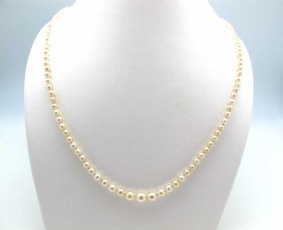 Collier composé d'un rang de 125 perles fines...