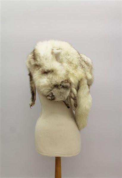 Col en renard argenté avec tête, pattes et...