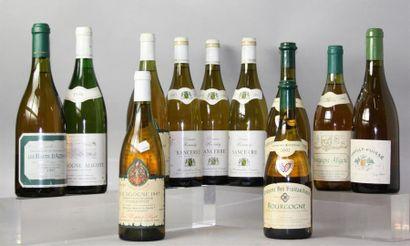 Lot de 11 Bouteilles Vins Blancs BOURGOGNE...