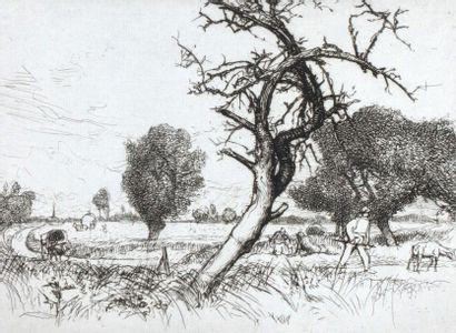 Auguste LEPERE (1849 1918) Pommier mort....
