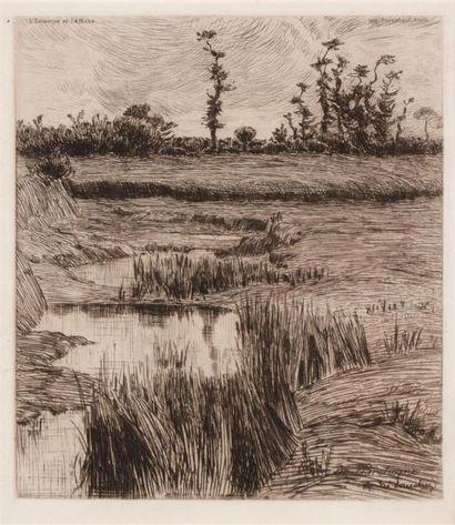André DAUCHEZ (1870 1948) Marais breton....
