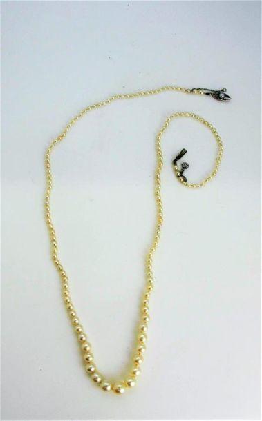 Collier composé de 143 perles fines en chute....