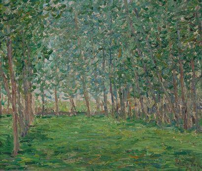 Francis PICABIA (1879-1953) Champ près d'un bois, 1903. Huile sur toile. Signée et...