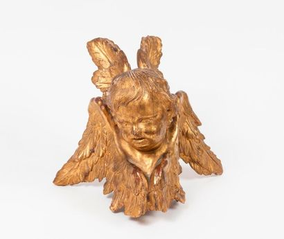 Head of a four-winged cherub in carved and gilded wood.  Element.  18th-19th centuries....