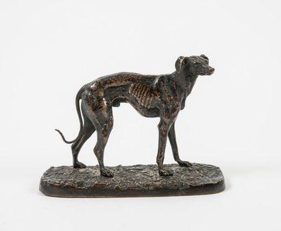 D'après Pierre-Jules MÊNE (1810-1879)  Greyhound.  Bronze print with brown patina....