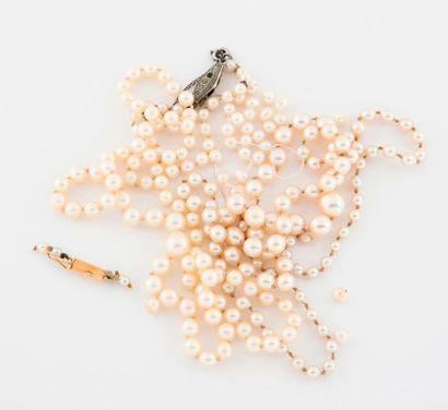 Deux colliers de perles de culture blanches....