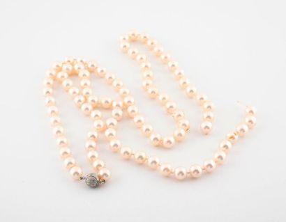 Sautoir de perles de culture blanches choker....