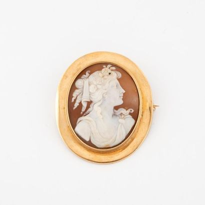 Medallion brooch in yellow gold (750) holding a cameo on a shell with the profile...