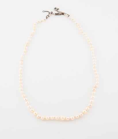 Collier de perles de culture de différentes...
