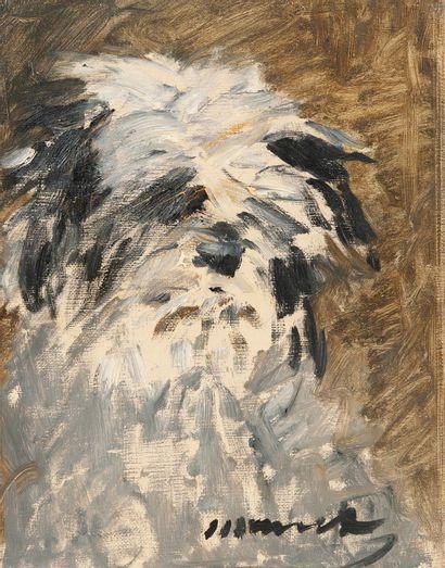 Edouard MANET (1832-1883) Le Chien «Minnay», 1879. Huile sur toile. Signée en bas...