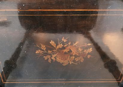 FRANCE, Epoque Napoléon III (1852-1870) Rectangular planter in black stained wood...