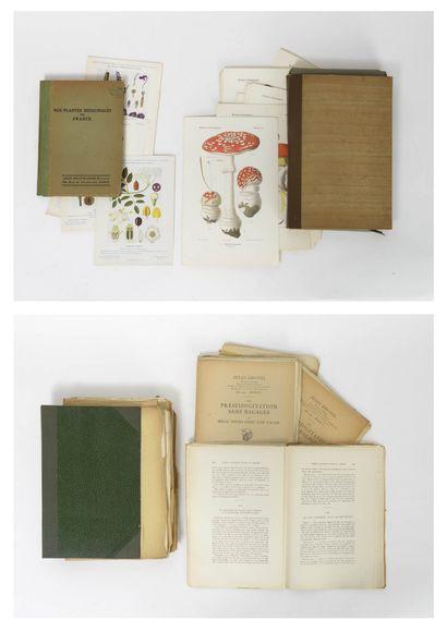 Lot de deux recueils de planches imprimées en fac-similé, comprenant :