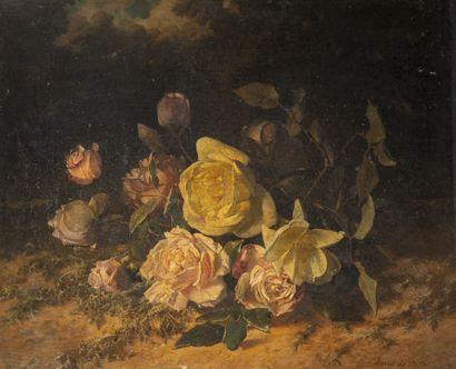 David DE NOTER (1818-1892)