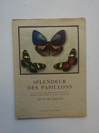 Splendeur des papillons.  Textes de Colette....