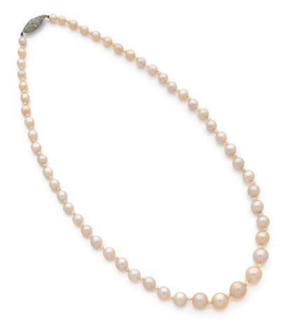 Collier composé d'une chute de perles fines d'environ 5,4 à 10,2 mm, alternées de...