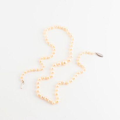 Collier de perles blanches de culture en...