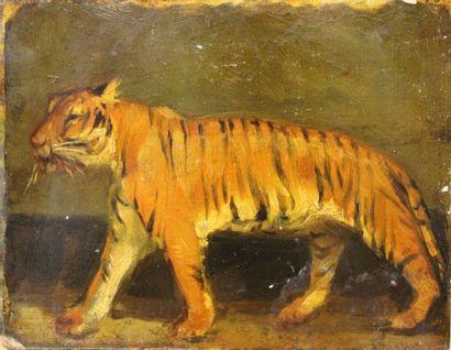 ÉCOLE FRANÇAISE DU XIXe siècle: «Tigre...