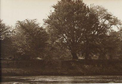 Arthur Radclyffe DUGMORE (1870-1955 - attribué...