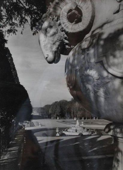 RENE JACQUES. Jardin du château de Versailles....