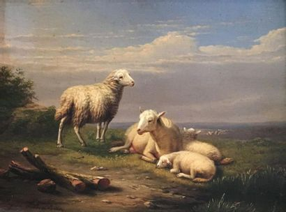 Eugène VERBOECKHOVEN (1798/99 - 1881) Moutons...