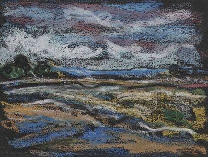 Jacques PELLEGRIN (1944-)  Paysage  Pastel...