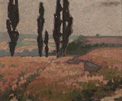 FRENCH school of the early 20th century Cypress landscape Oil on canvas original...