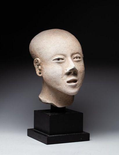 Superbe tête modelée du portrait d'un jeune...