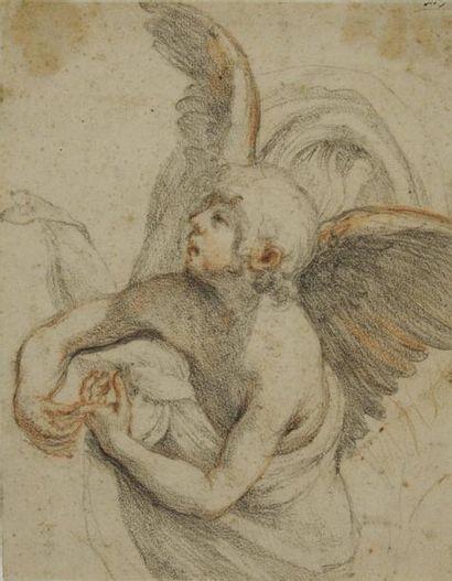 Attribué à Giovanni BILIVERTI (Florence 1576 - 1644) Etude d'ange Crayon noir et...