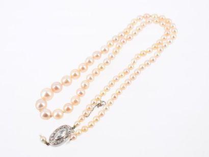 Collier formé de 88 perles de culture disposées...