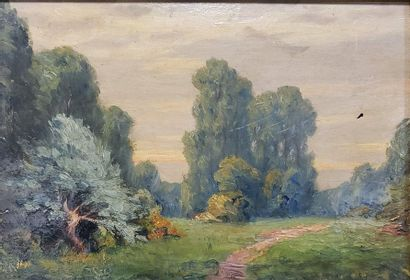 20th Century School  Country lane  Oil on panel  Insect holes  17 x 23.5 cm