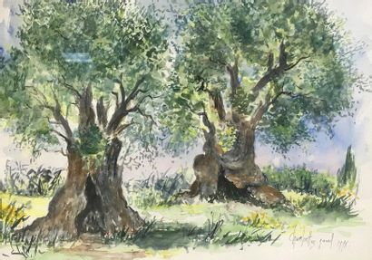 The olive trees  Watercolour  Signed lower...