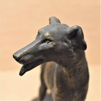 Louis-Albert CARVIN (1875-1951)  Barzoid greyhound standing on a rock  Regulates...