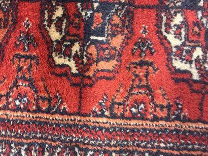 Fine velvet and silk fringes carpet  360 x 241 cm