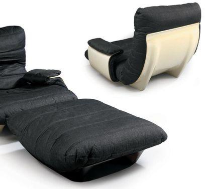 Michel DUCAROY Deux grands fauteuils à coque...