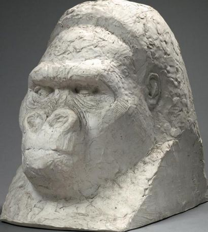 Jean JOACHIM (1905 - 1990) Tête de gorille...
