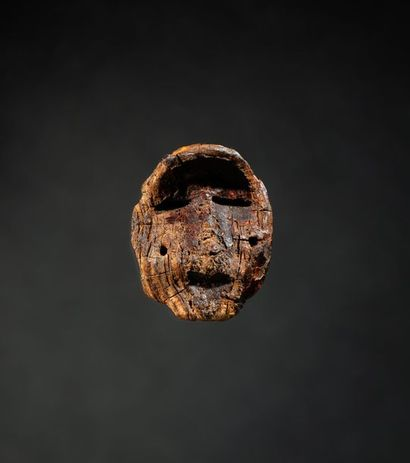 Magnifique tête présentant un visage enjoué...