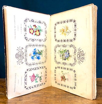 Book on the Birth of Flowers or the 365...