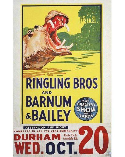 Hippopotame Ringling Bros and Barnum & Bailey Circus vers 1945