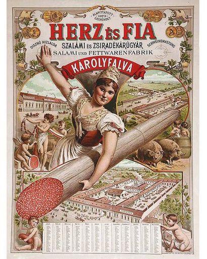 Szalami Es Zsiradekarugyar Karolyfalva 1890