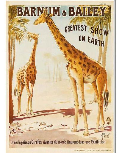 La Seule Paire de Girafes Vivantes du Monde Barnum & Bailley Greatest Show On Earth...