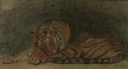 Roger GODCHAUX (Vendôme 1878-1958) Tigre...