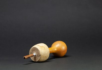 Poporo contenant de la chaux utilisé comme catalyseur par les indigènes lorsqu'ils...