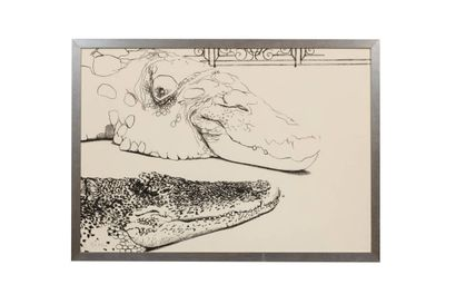 Gilles Aillaud (1928-2005)  L'alligator  Lithographie,...