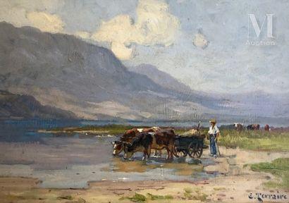 Clovis Frederick Terraire (1858-1931)