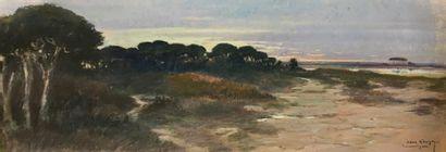Albert GOUGES (XX ème)  Camargue  Pastel...
