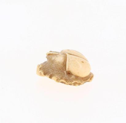 JAPON, époque Edo (1603-1868) Netsuke en ivoire* patine jaune escargot glissant sur...