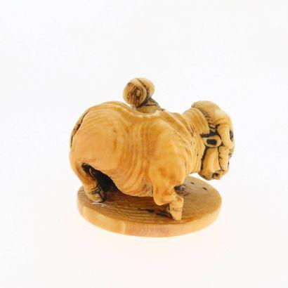 *JAPON, XVIIIe siècle Netsuke en ivoire* représentant un garçon avec un bœuf (Ushidoji)....